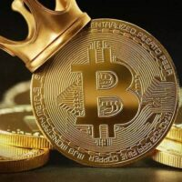 The price of bitcoin grew by 5% every day, reaching $ 50,000