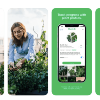 The United States has created a social network for plant fans